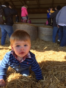 Spooky hay barn at the spooky Pumpkin Festival